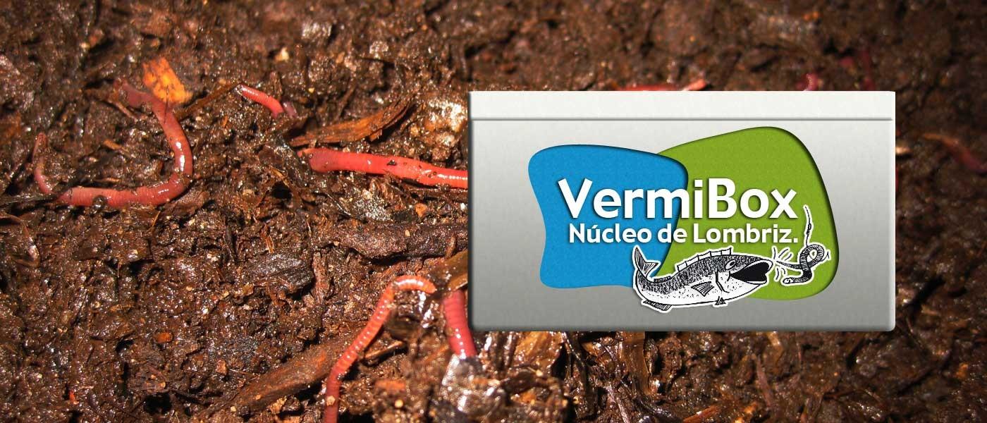 vermibox